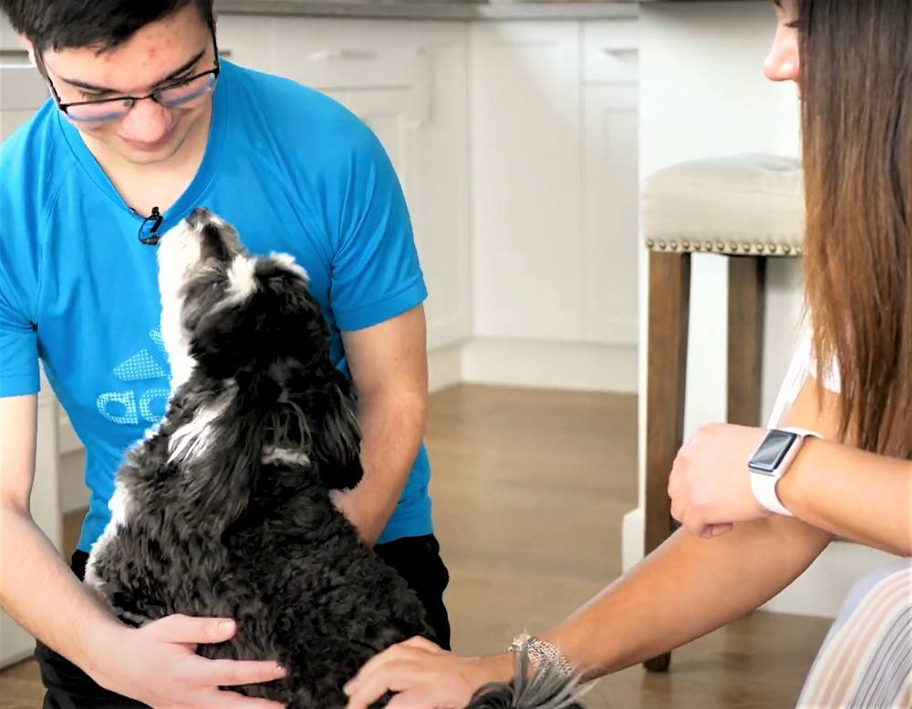 Host and Guest relationship - Paulette, Jonathan, and dog playtime